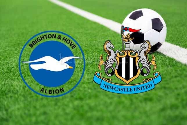 Brighton v Newcastle Prediction